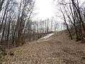 Sovetskiy rayon, Bryansk, Bryanskaya oblast', Russia - panoramio (429).jpg