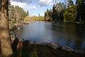Spokane Manito Park Duck Pond 20150411.jpg