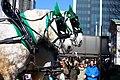 St. Patrick's Day Parade 2013 (8567560326).jpg