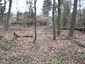StadwaldFrankfurt Sachenhaeuserlandwehrweg IMG 1794.JPG