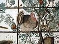 Stanza degli uccelli, volta, tacchino (prima rappresentazione in auropa).JPG