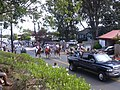 Starr-030705-0017-Schinus terebinthifolius-July 4 Parade-Makawao-Maui (24554770841).jpg