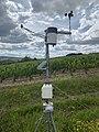 Station météo connectée dans les vignes d'Irancy (2).jpg