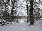 Stearns Pond