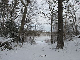 Stearns Pond, Harold Parker State Forest, North Andover MA.jpg