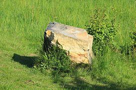 Stein von Teufelsmauer auf dem Feld..IMG 2383WI.jpg