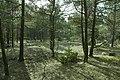 Stenkumla gravfält 4-1 - KMB - 16001000006832.jpg