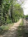 Steps down the embankment - geograph.org.uk - 1272902.jpg