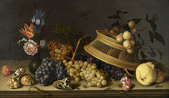 Still Life of Flowers, Fruit, Shells, and Insects - Balthasar van der Ast - Google Cultural Institute.jpg