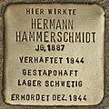 Stolperstein für Hermann Hammerschmidt (Cottbus).jpg