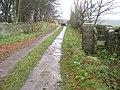 Stone stile redundant on ungated farm access lane - geograph.org.uk - 1596638.jpg