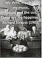 Strauss on happiness.jpg