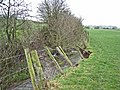 Stream below Low Stotfold - geograph.org.uk - 344757.jpg