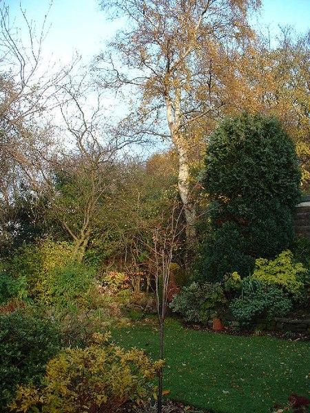 File:Suburban Garden - geograph.org.uk - 90907.jpg