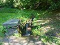 Svinka 3 - panoramio.jpg
