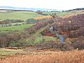 Swin Hope - geograph.org.uk - 613842.jpg