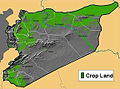 Syria Crop Land Map.jpg