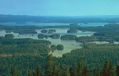 Lake Syväri in Nilsiä, Finland, an example of a lake ecosystem.