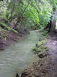 Canalul Timiș