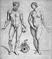 T. Geminus, Compendiosa totius anatomie deli Wellcome L0031935.jpg