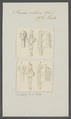 Taenia villosa - - Print - Iconographia Zoologica - Special Collections University of Amsterdam - UBAINV0274 105 19 0028.tif