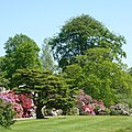 Temple Newsam gardens in bloom (Taken by Flickr user 27th May 2012).jpg
