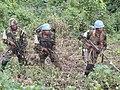 Territoire de Beni, Province du Nord Kivu, RD Congo les Forces coalisées FARDC-MONUSCO engagées dans l'opération « Usalama » (Sécurité) contre les activités négatives, dont celles des ADF (32518226845).jpg