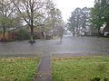 Terrytown LA Rain 28Mch2014.jpg