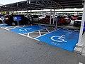 Tesco Eco Tropics - Disabled Parking.jpg