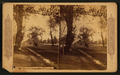 The Alameda at San Jose, California, from Robert N. Dennis collection of stereoscopic views.png