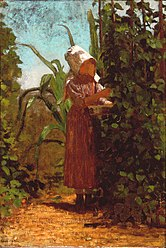 The Bean Picker