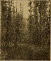 The Canadian field-naturalist (1931) (20332800838).jpg