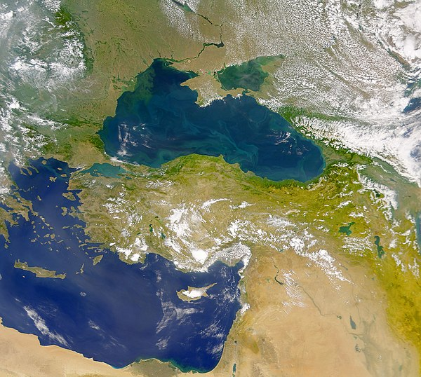 This SeaWiFS view reveals the colourful interplay of currents on the sea's surface The Danube Spills into the Black Sea.jpg
