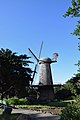 The Dutch Mill (214350057).jpeg