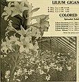 The Florists' exchange - a weekly medium of interchange for florists, nurserymen, seedsmen and the trade in general (1917) (14773798242).jpg