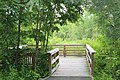 The Fort River Birding and Nature Trail (29230684654).jpg