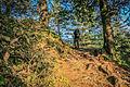 The Mukshpuri Trail.jpg