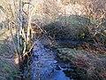 The confluence of Mohope Burn and Wellhope Burn (2) - geograph.org.uk - 704841.jpg