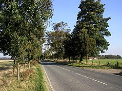 The road to Walkington - geograph.org.uk - 63866.jpg
