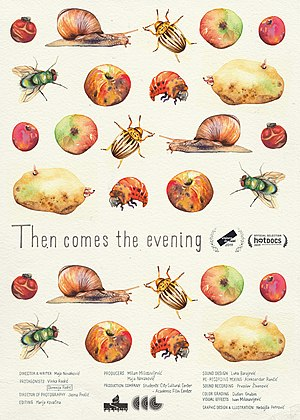 Then Comes the Evening poster.jpg