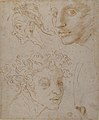 Three Heads after Michelangelo's Frescoes in the Sistine Chapel MET 80.3.95.jpg
