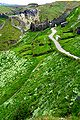 Tintagel-greenery.jpg