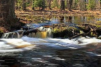 Tobyhanna Creek - Tobyhanna Creek in 2017