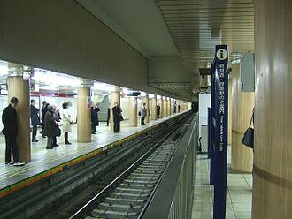Kasumigaseki Station (Tokyo) - Marunouchi Line platforms