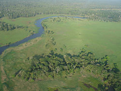 Oblique aerial photograph in South Fly District