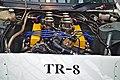 Triumph TR8 Rennwagen (46831683535).jpg