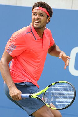 Image illustrative de l'article Jo-Wilfried Tsonga