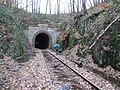 Tunnel der ehemaligen Odenwaldbahn bei Wald-Michelbach DSCF6680.jpg