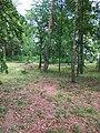 Turbiv park 148.jpg