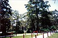 UL Lafayette Cypress Lake.jpg